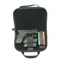 Case For Gun and Accessories